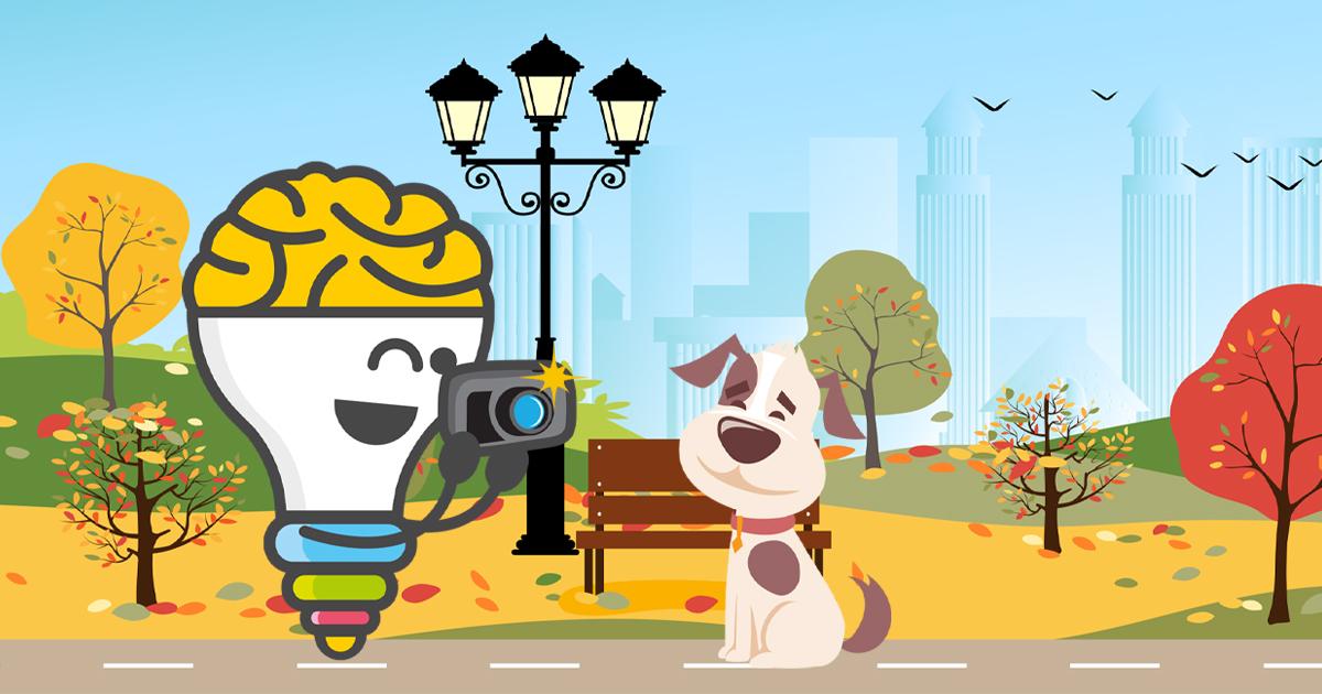 ¿Qué significa pet marketing ?