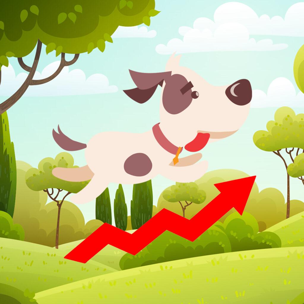 Pet marketing, la nueva forma que usan las marcas para atraer clientes a través de las mascotas
